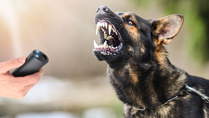 best budget Stop Dog Barking Device under $100 our specifications review of product